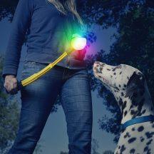 Huck 'N Tuck GlowStreak LED labda és összecsukható dobókar