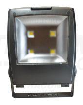 Tracon R-SMDP-200W LED fényvető, porszórt házas