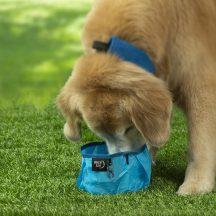 RadDog™ összehajtható kutyatál, kék